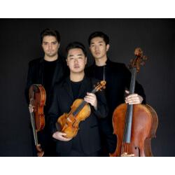 Trio Arnold 1 © Neda Nevae
