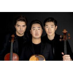 Trio Arnold 2 © Neda Nevae