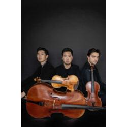 Trio Arnold 3 © Neda Nevae
